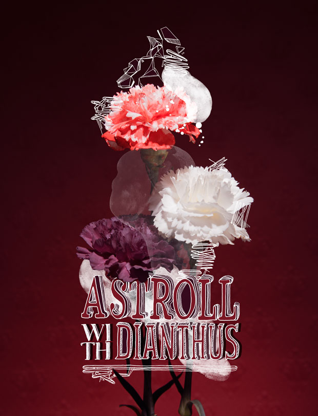 Photography; Photo; Editorial; Type; Flower; Illustration; Painting; Bubbles; Dianthus; Font; Man; Fashion; Fashion Editorial;Stroll